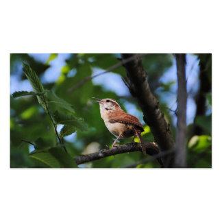 Pájaro del patio trasero del Wren de Bewick Tarjetas De Visita