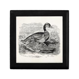 Pájaro del pato del pato silvestre del vintage - cajas de joyas