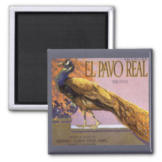 Pájaro del pavo real del Pavo del EL del arte de Imanes Para Frigoríficos