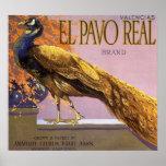 Pájaro del pavo real del Pavo del EL del arte de Póster