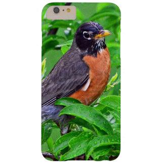 Pájaro del petirrojo en la lluvia y las maderas, funda de iPhone 6 plus barely there