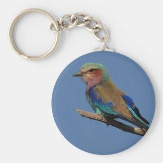 Pájaro del rodillo de la Lila-Breasted Llavero Redondo Tipo Pin