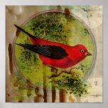 Pájaro del rojo del vintage posters