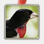 Pájaro del Rosa-Breasted Adorno De Navidad