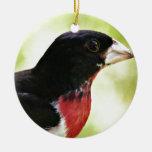 Pájaro del Rosa-Breasted Adornos De Navidad