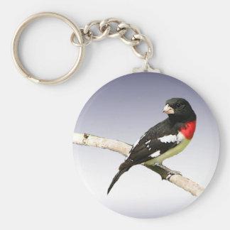 Pájaro del Rosa-breasted Llavero Redondo Tipo Pin