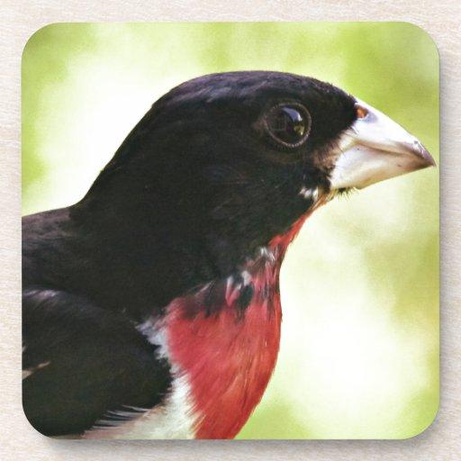Pájaro del Rosa-Breasted Posavaso