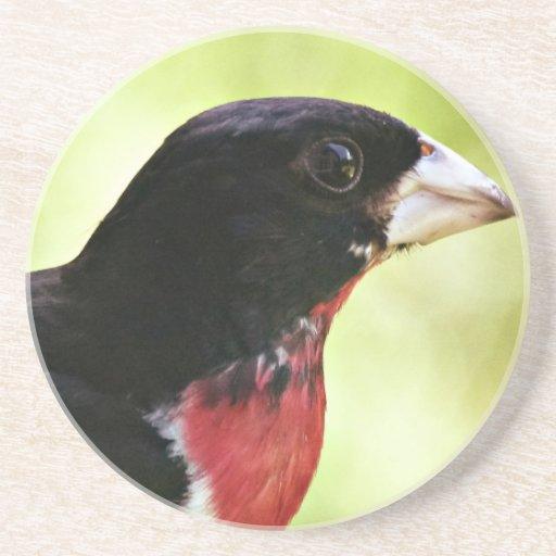 Pájaro del Rosa-Breasted Posavasos Manualidades