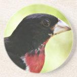 Pájaro del Rosa-Breasted Posavasos Para Bebidas