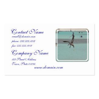 Pájaro del Sanderling del salto Plantillas De Tarjetas De Visita