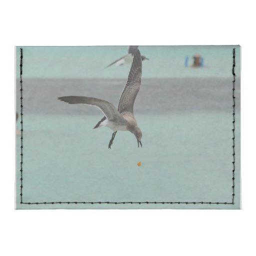 Pájaro del Sanderling del salto Tarjeteros Tyvek®