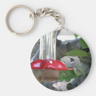 pájaro del tarareo en alimentador llaveros personalizados