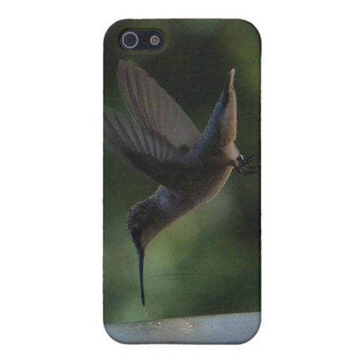 Pájaro del tarareo en Mid Air iPhone 5 Funda