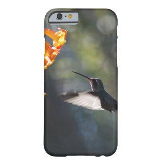 Pájaro del tarareo funda de iPhone 6 barely there