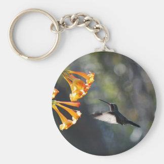 Pájaro del tarareo llavero