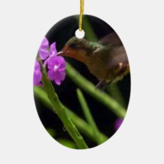 Pájaro del tarareo sobre los colibríes lindos 99 adorno ovalado de cerámica