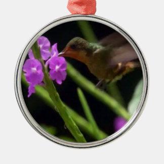 Pájaro del tarareo sobre los colibríes lindos 99 adorno redondo plateado