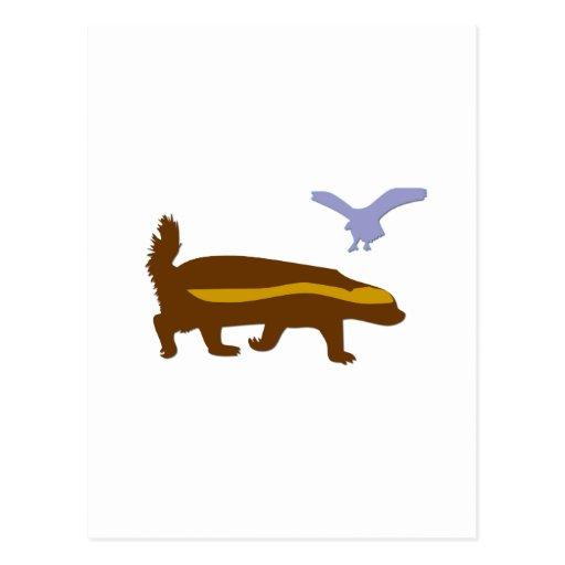 Pájaro del tejón de miel tarjeta postal