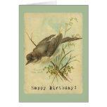 Pájaro del vintage, cumpleaños felicitaciones