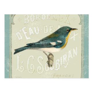 Pájaro del vintage que hace frente a la derecha postal