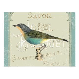 Pájaro del vintage que hace frente a la izquierda tarjetas postales