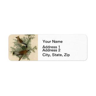 Pájaro del Waxwing de cedro de Audubon Etiquetas De Remite