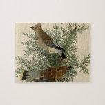 Pájaro del Waxwing de cedro de Audubon Rompecabezas Con Fotos