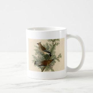 Pájaro del Waxwing de cedro de Audubon Taza De Café