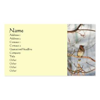 Pájaro del Waxwing en la tarjeta de visita animal