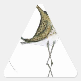 Pájaro del zarapito, fernandes tony pegatinas triangulo