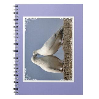 pájaro dulce paloma agua libretas