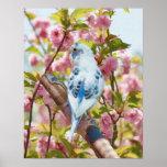 Pájaro e impresión de la primavera de las flores póster