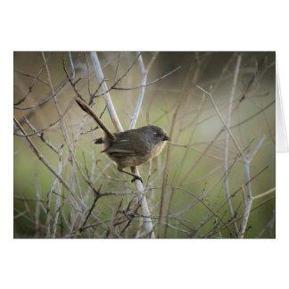 Pájaro en árbol tarjeta de felicitación