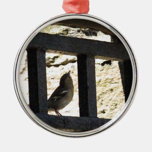 Pájaro en Edimburgo, Escocia Adorno Navideño Redondo De Metal