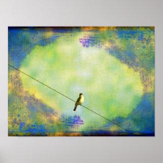 Pájaro en el alambre póster