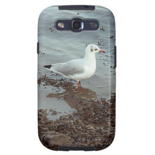 Pájaro en el borde del agua. Gaviota de cabeza neg Galaxy S3 Fundas