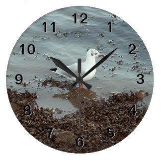 Pájaro en el borde del agua. Gaviota de cabeza neg Reloj Redondo Grande