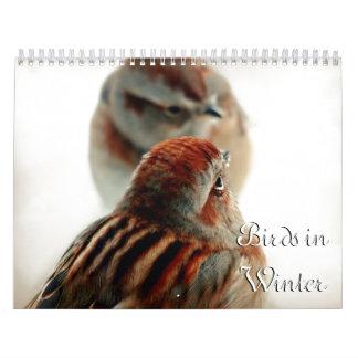 Pájaro en el calendario de la fotografía del
