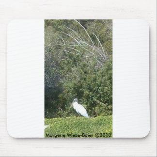 Pájaro en Englewood, FL Mousepad