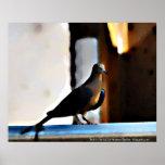 """""""Pájaro en la cerca"""" por Andrew Gettler Poster"""