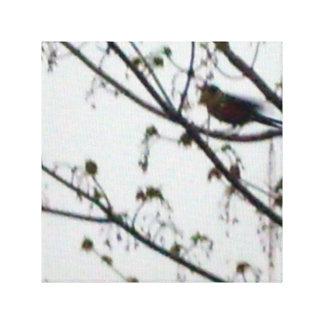 Pájaro en la imagen del arte de la lona del árbol