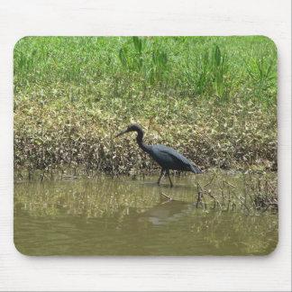 Pájaro en la isla de Avery Luisiana Alfombrilla De Raton