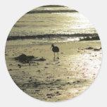 Pájaro en la playa en la puesta del sol pegatinas redondas