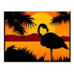 Pájaro en la postal de la puesta del sol