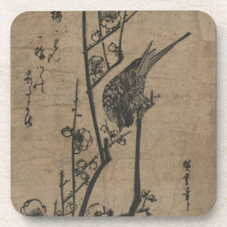 Pájaro en rama del ciruelo posavaso