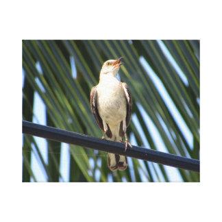 Pájaro en un alambre impresión de lienzo