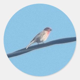 Pájaro en un alambre pegatina redonda