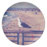 Pájaro en un carril platos de comidas
