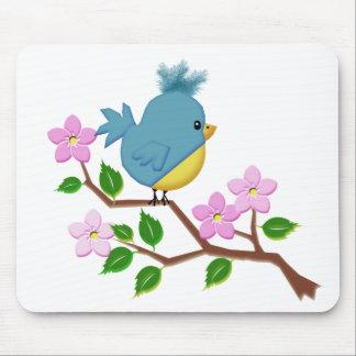 Pájaro en un miembro de árbol con las flores de la alfombrilla de ratones