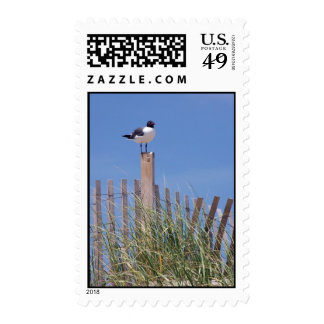 Pájaro en un sello